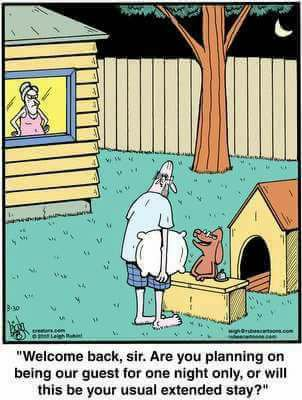 doghouse.jpg