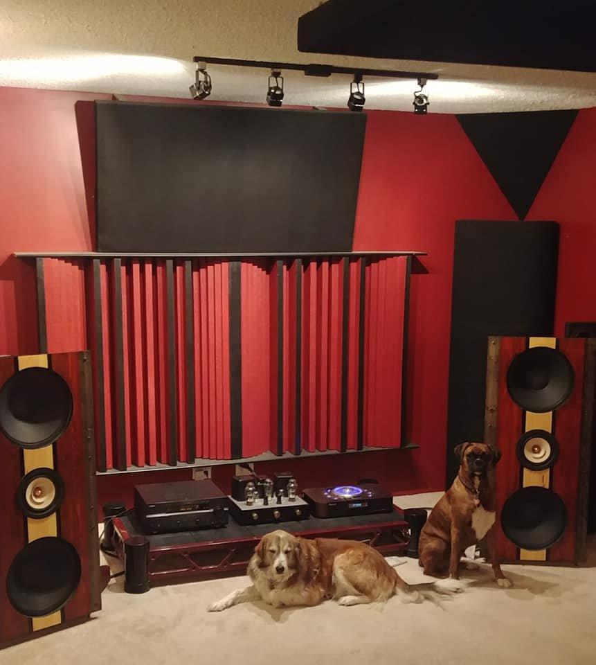 dogs in room.jpg