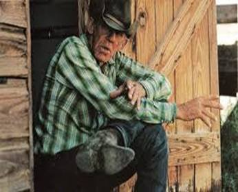 Old Cowboy.jpg